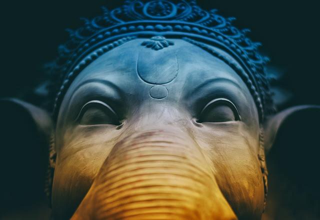 Los Elefantes En La India Elefantepedia