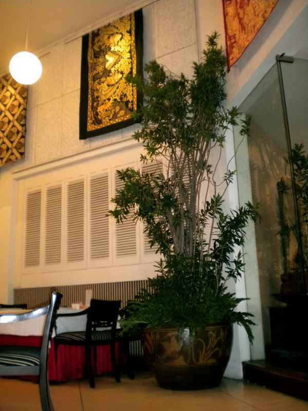 gambar dapur comel   walls zee