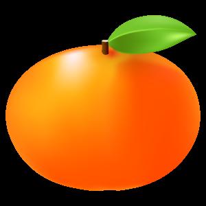 柿のイラスト 花植物イラスト Flode Illustration フロデイラスト