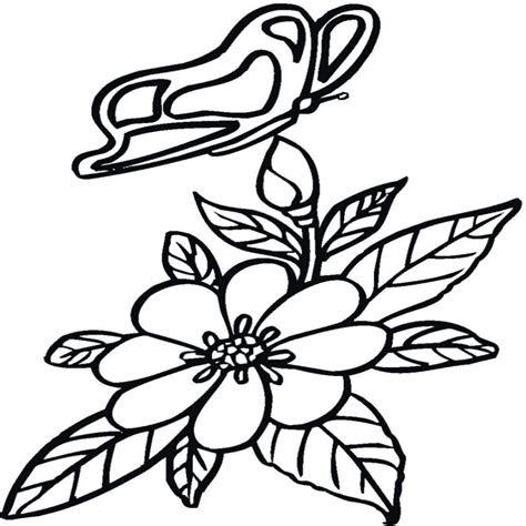 Dibujos De Rosas Bonitas A Color Kalentri 2018 Atelyeteknolojicom