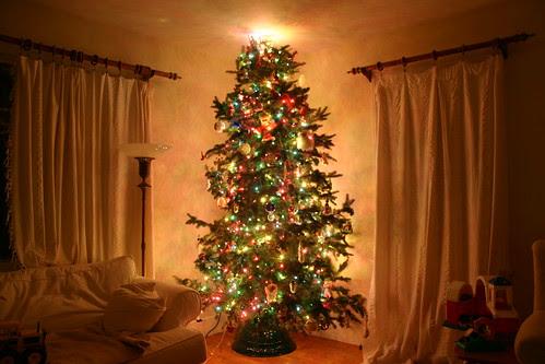 1-08-06 christmas tree 011