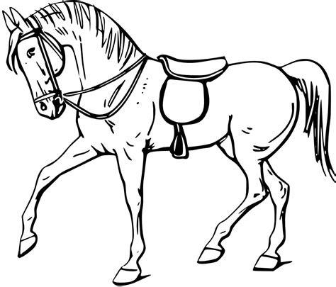 horse coloring pages preschool  kindergarten