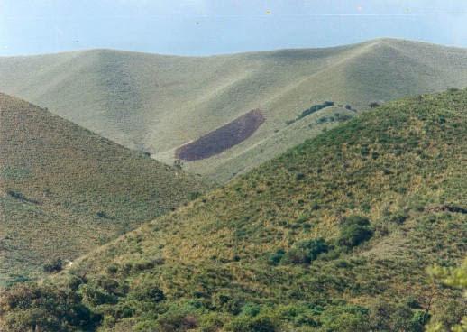 """Cerro """"El Pajarillo"""""""