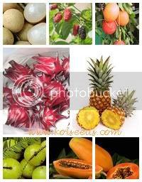 ชาผลไม้ 7 ชนิด 7 in 1 7 Fruits Tea