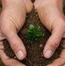 Abril - Planeta Sustentável