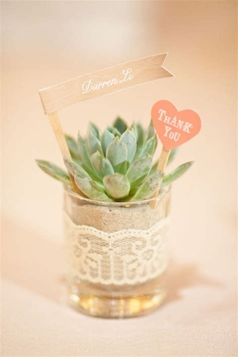 DIY Wedding Plant Favors are Perfect for a Green Wedding