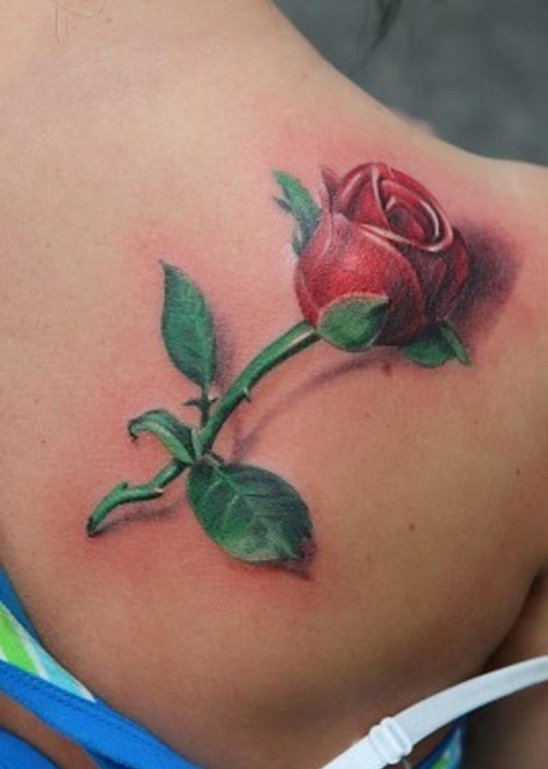 Single Rose Tattoo On Shoulder Photo 3 2017 Real Photo Pictures