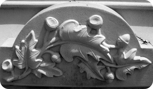 Acorns & Leaves II by midgefrazel