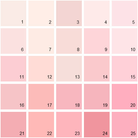 Benjamin Moore Pink House Paint Colors - Palette 04
