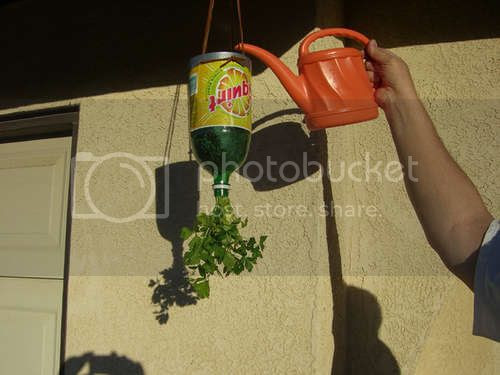 Plastic Bottles into Upside Down Herb Planters