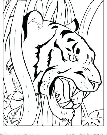 detroit tigers coloring pages at getdrawings  free