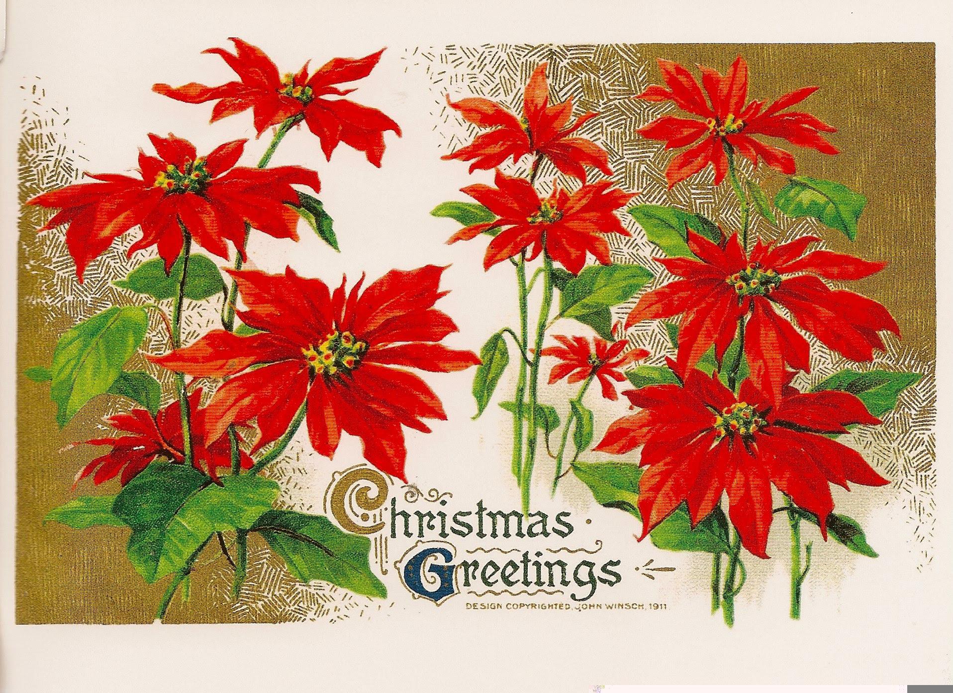Christmas Greetings Reproduction Postcard