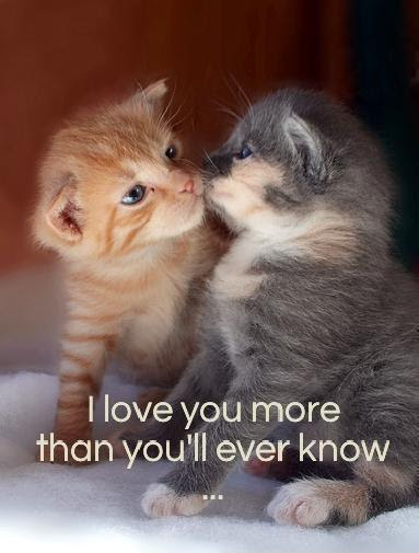I Love You More Than Youll Ever Know Picture Quotes