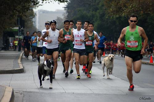 Corrida IND, 25.000 deportistas 10.00 am, Santiago de Chile. by Alejandro Bonilla