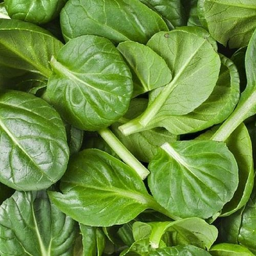 FOOD THAT PROMOTES HAIR GROWTH
