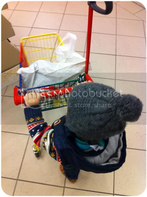 Einkaufswagen-Zwuggel