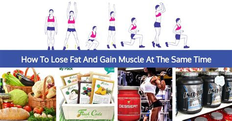 muscle factory   lose fat  gain weight
