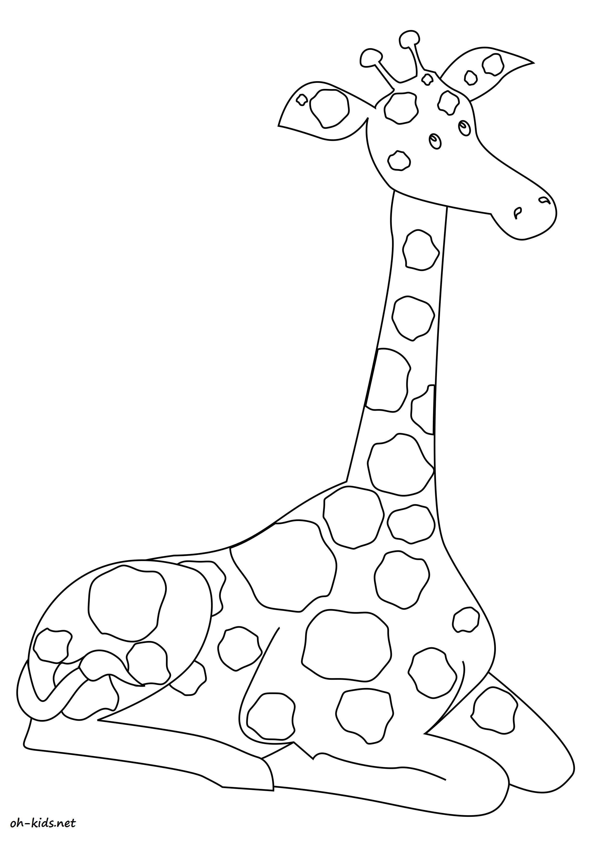 dessin de girafe  colorier et imprimer Dessin 1585