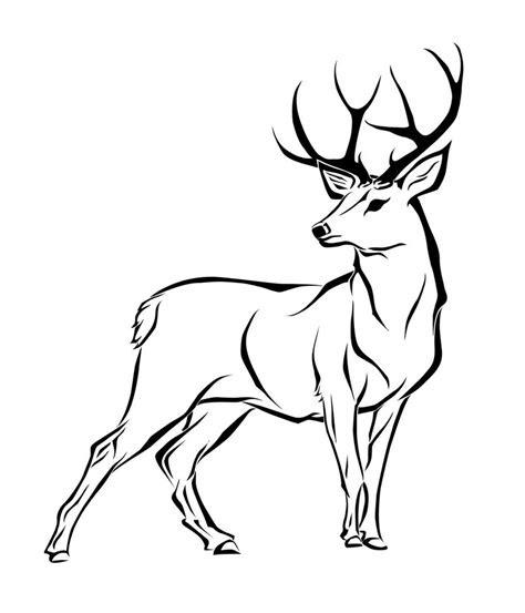 deer drawing amazing wallpapers