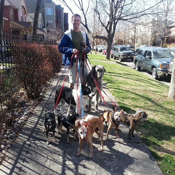 man-adopts-senior-dogs-shelter-steve-greig-51