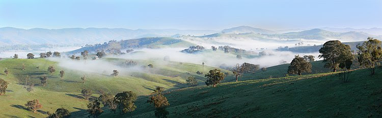 Light patches of mist on a cool morning in Australia