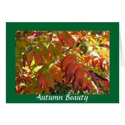 Autumn Leaves Stationery Note Card
