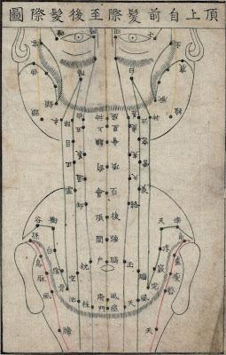 scalp acupuncture map