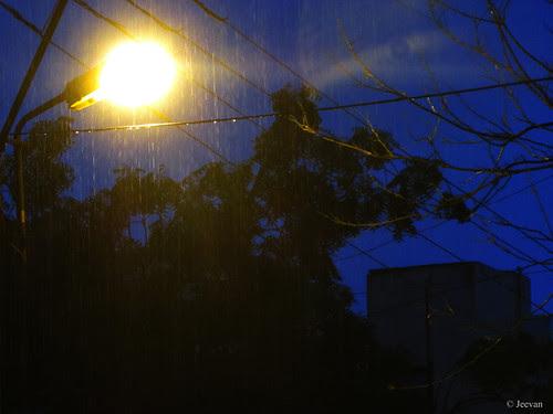 Twilight Rain