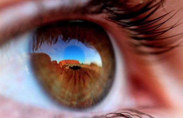 Фотоработы с конкурса National Geographic 2011 (47 фото)