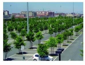 The may 2012 carpark gangbang - 2 part 1