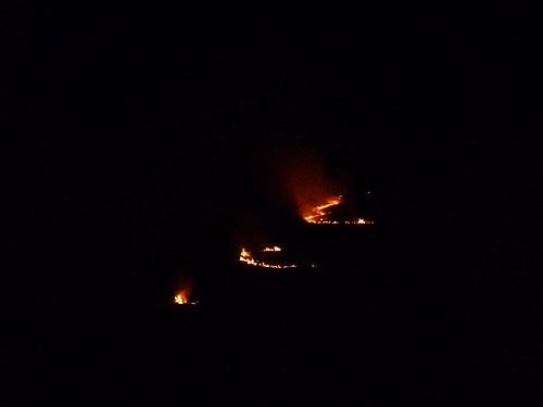 P1040115 - Grass fire at Llangennith, Gower