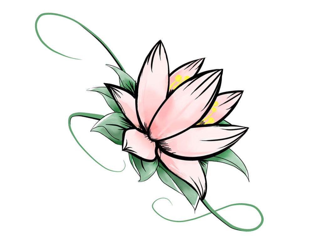 Flower Lotus Flower Drawing Step By Step