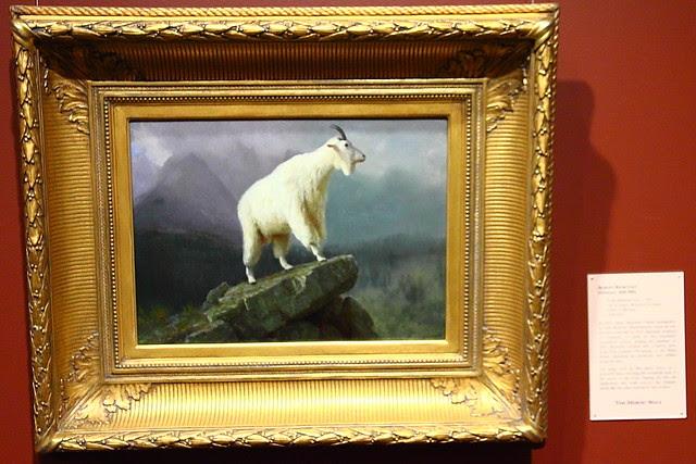 IMG_8938 National Museum of Wildlife Art, Jackson, WY