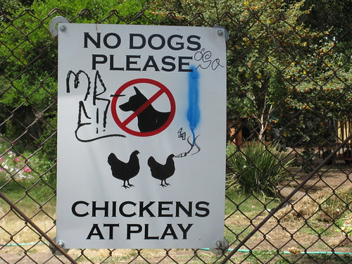 No Dogs Please - Chickens at Play sign on gate to the Edible Schoolyard in North Berkeley