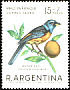 Blue-and-yellow Tanager Thraupis bonariensis
