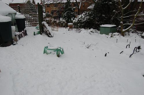 allotment snow Jan 13 2