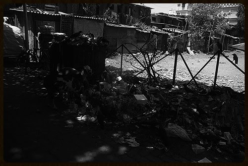 Bandra Has Always Been Raped By The The Builder Politician Nexus by firoze shakir photographerno1