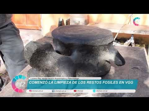 Comenzó la limpieza de los restos fosiles prehistoricos hallados en La Isleta.