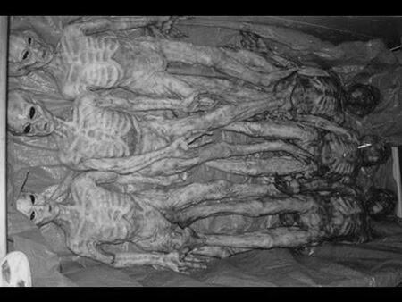 alienígenas mortos