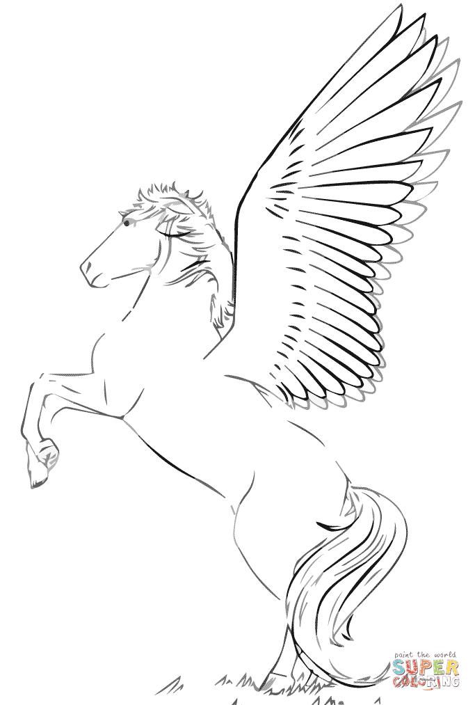 malvorlage fliegendes pferd  zeichnen und färben