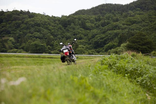 Harley Davidson XL 883R 061