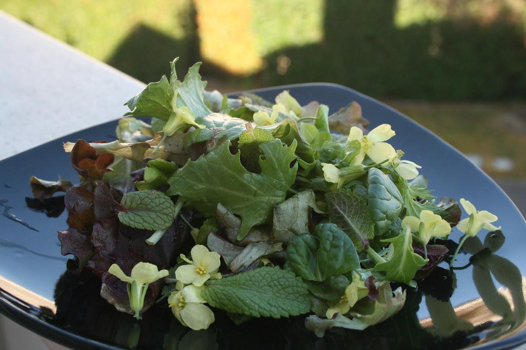 Broccoli Flower - Mint Salad