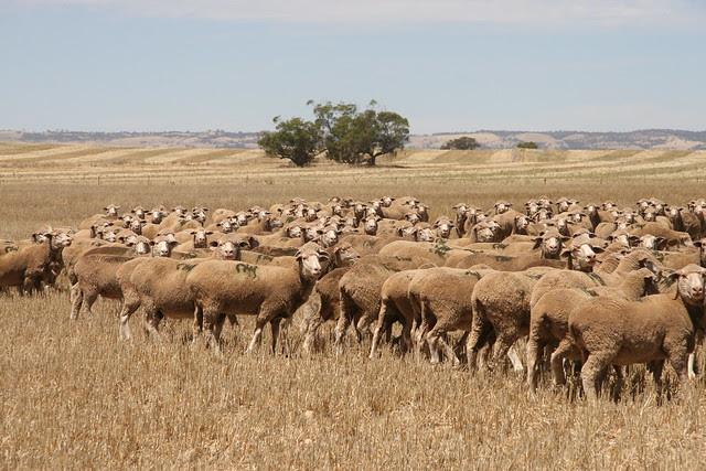 Feb- crowded