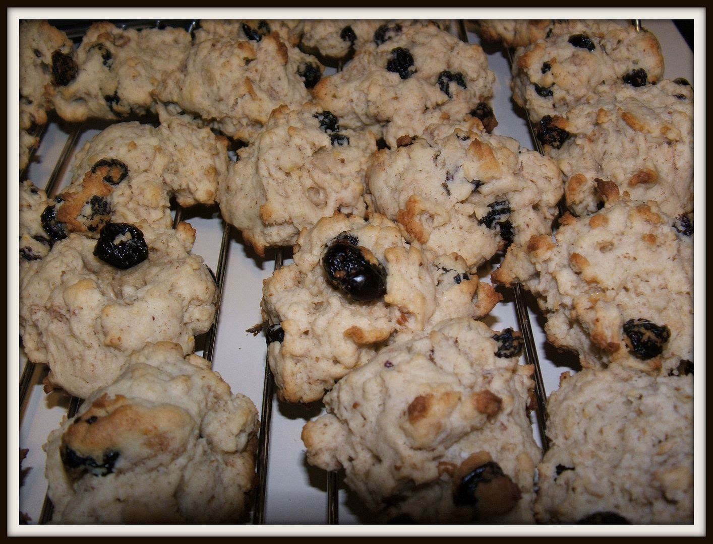 Lemon Blueberry Cookies by Angie Ouellette-Tower for godsgrowinggarden.com photo 006_zps39cad199.jpg