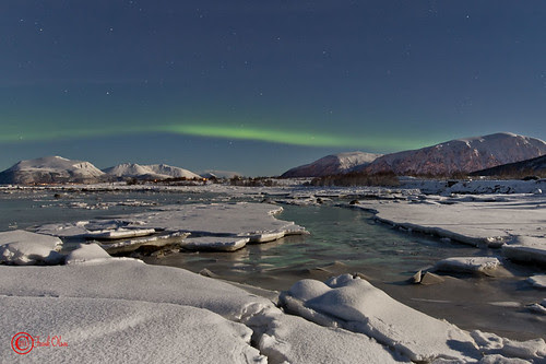 1K7A7277-2 sea ice