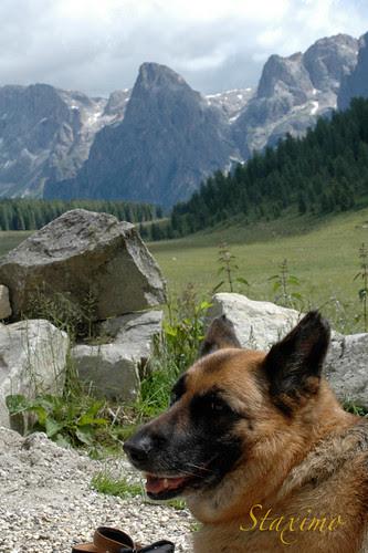 Tosca in montagna