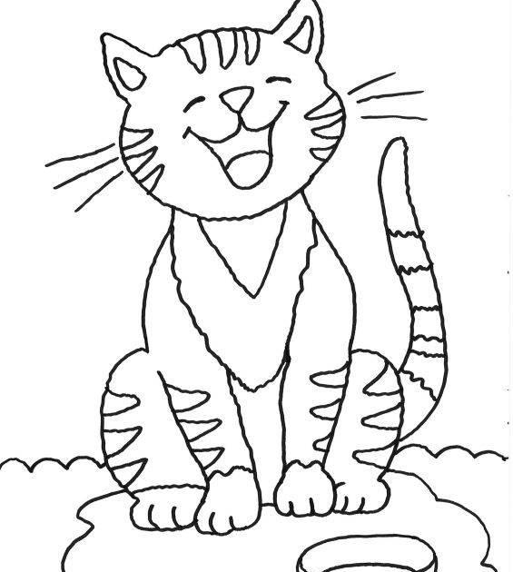 ausmalbilder von katzen zum ausdrucken
