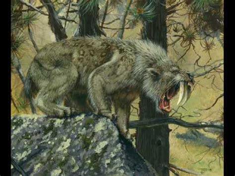 animales prehistoricos youtube