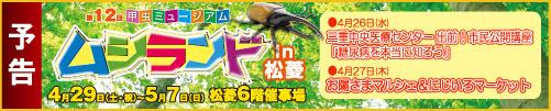 2017musiyokoku_ban2.jpg