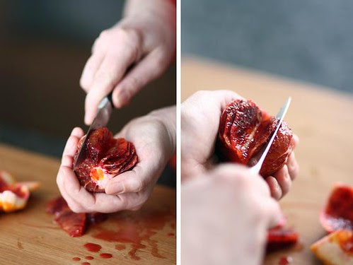 bloedappelsien